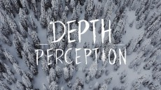 Quiksilver: Depth Perception